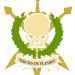 Tercios de Flandes